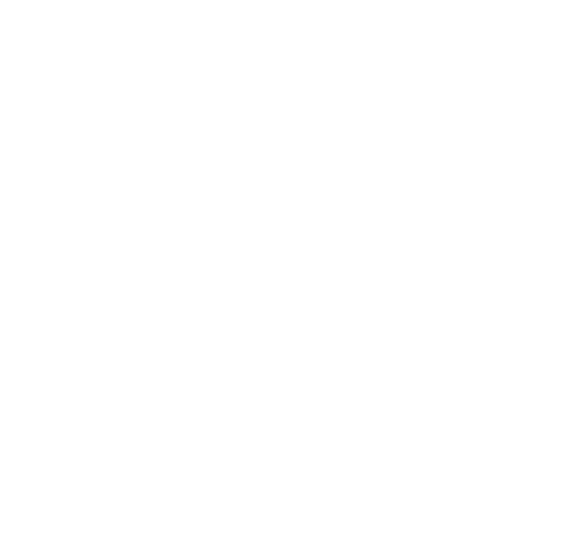 Logo Champagne Louis Massing